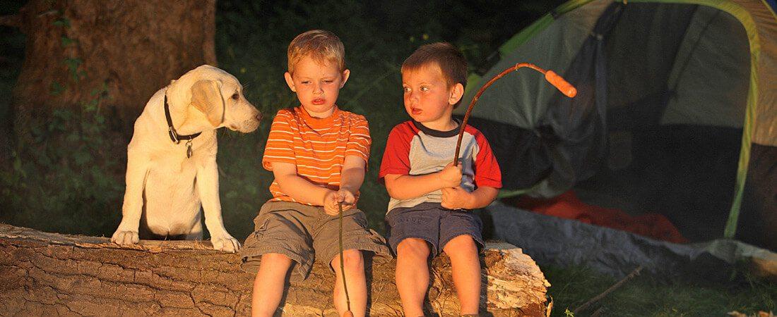 rv campground, rv resort, kq ranch resort